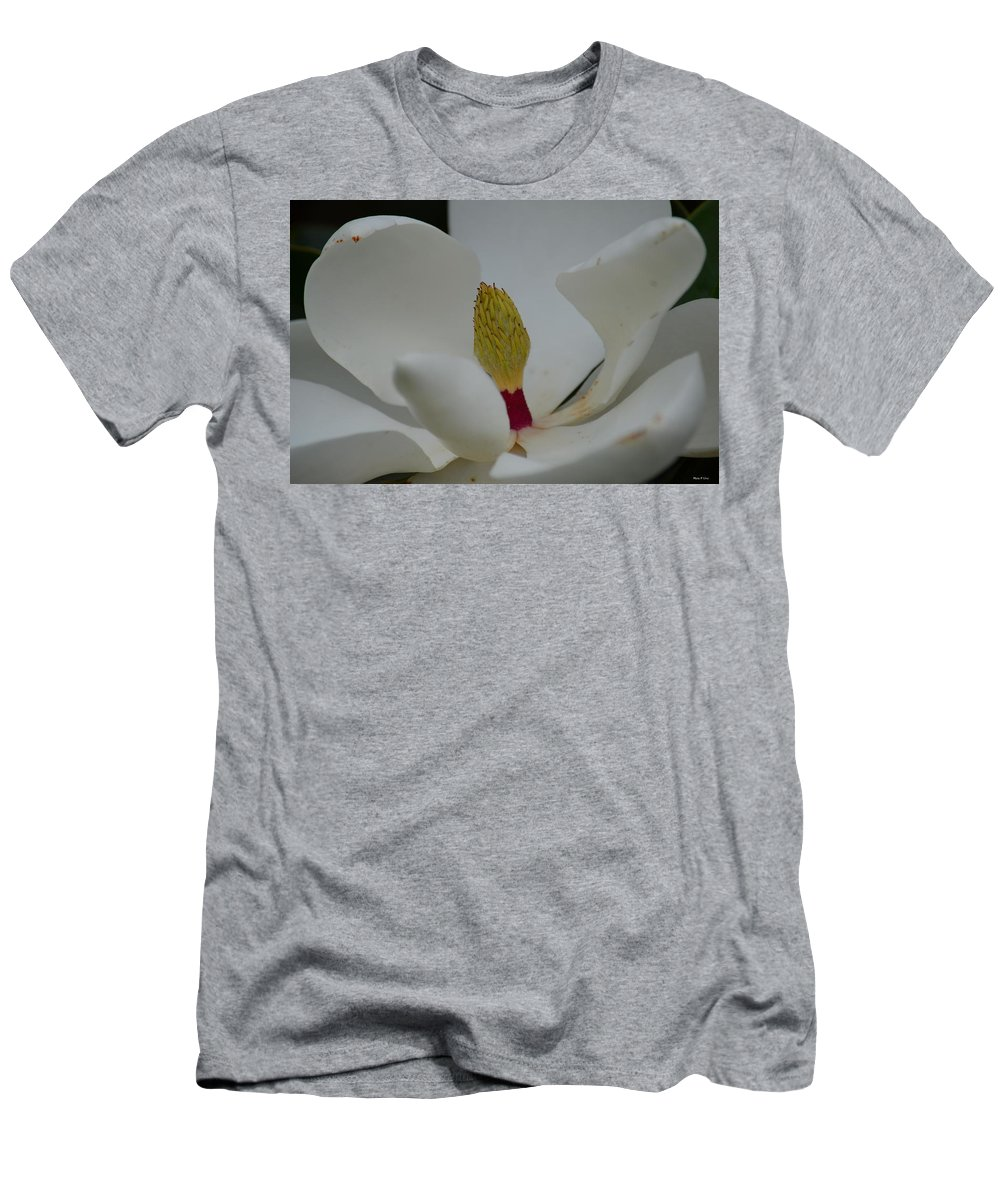 Summer Magnolia Ii Men's T-Shirt (Athletic Fit) featuring the photograph Summer Magnolia II by Maria Urso