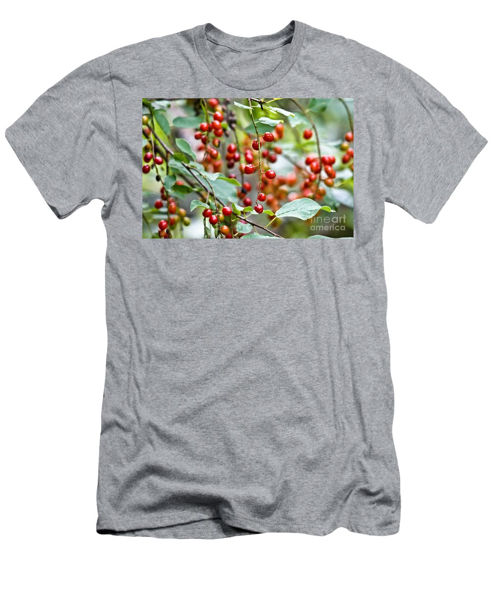 Chokecherries Men's T-Shirt (Athletic Fit) featuring the photograph Summer Wild Berries by Cheryl Baxter