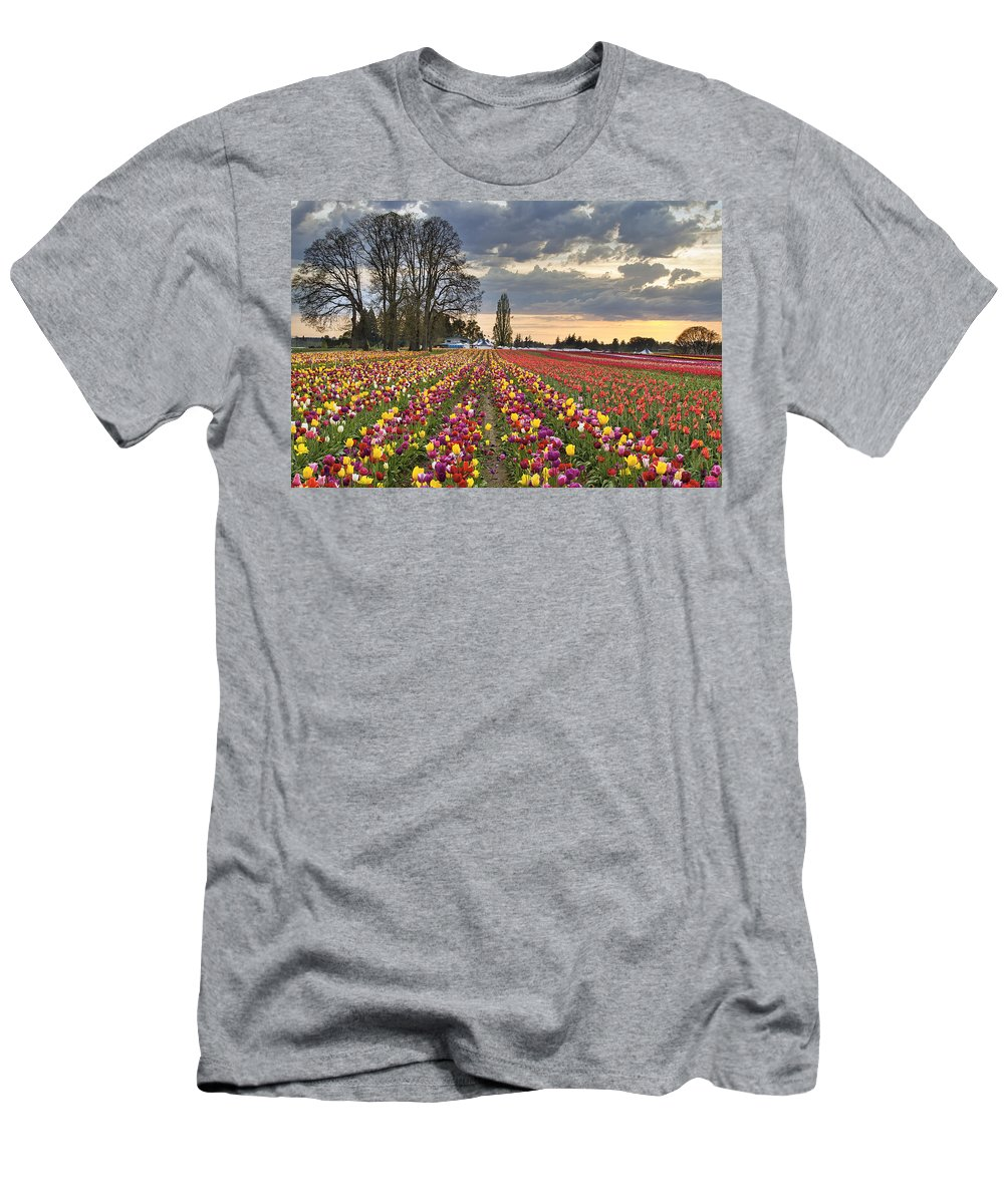 Sunset Men's T-Shirt (Athletic Fit) featuring the photograph Sunset Over Tulip Flower Farm In Springtime by Jit Lim