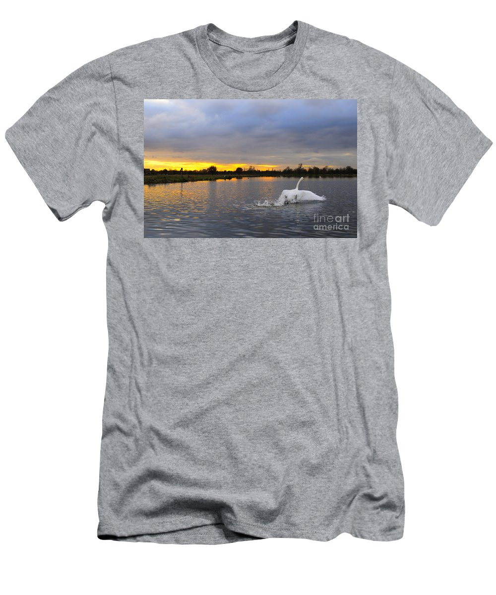 England Men's T-Shirt (Athletic Fit) featuring the photograph Swan Taking Off by Lana Enderle