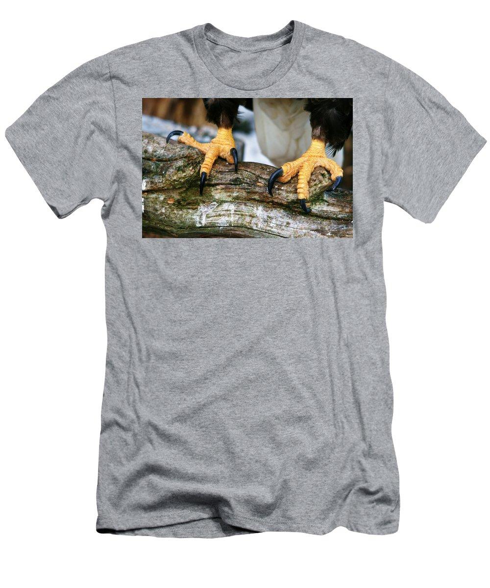 Eagle Men's T-Shirt (Athletic Fit) featuring the photograph Talons by Karen Jones