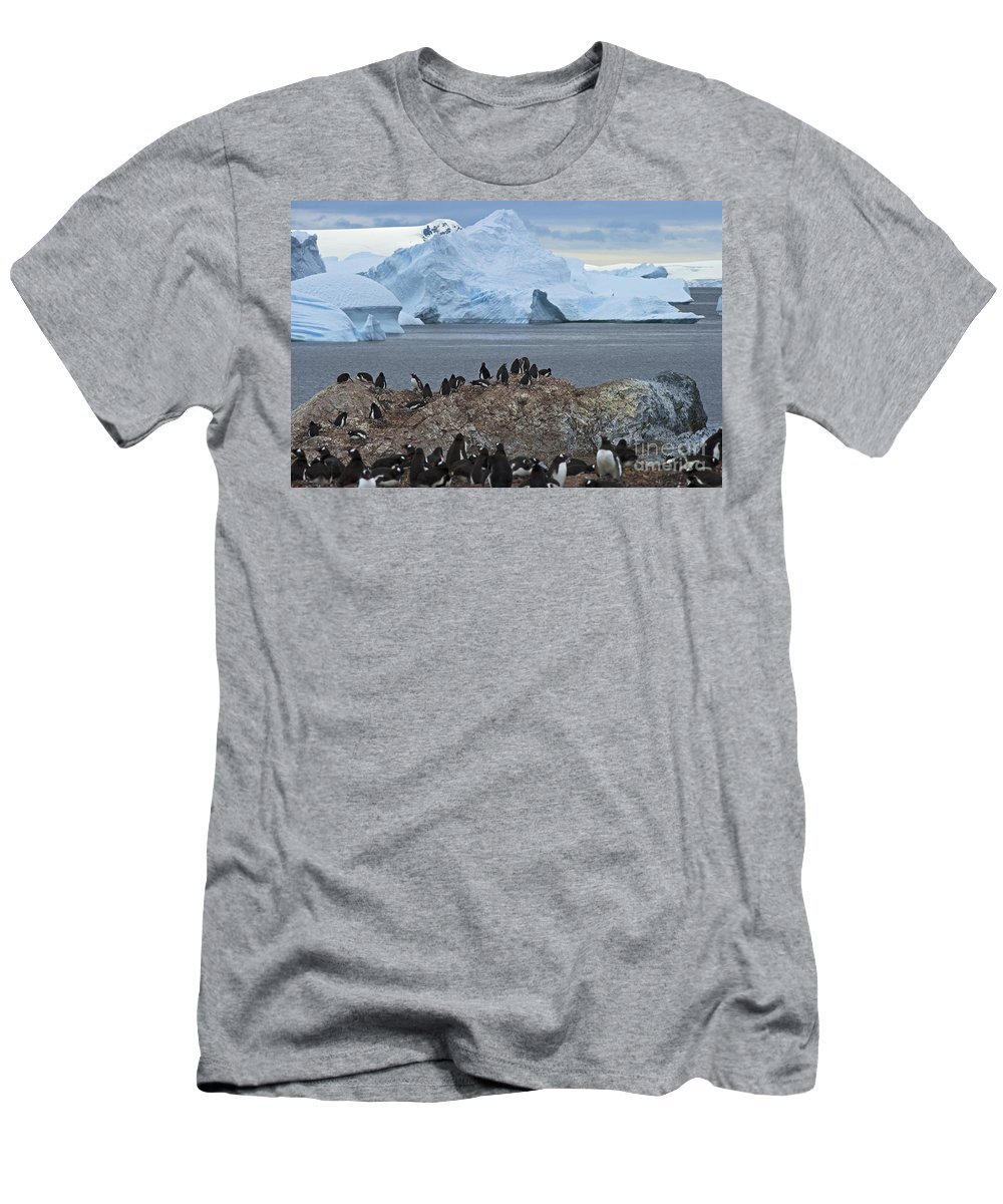 Festblues Men's T-Shirt (Athletic Fit) featuring the photograph The Last Wilderness... by Nina Stavlund