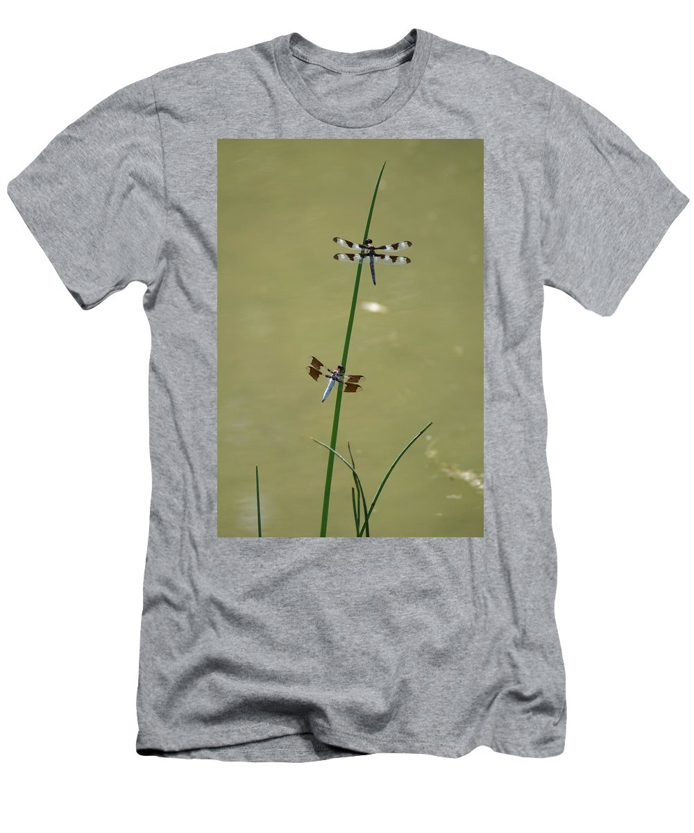 Dragonflies Men's T-Shirt (Athletic Fit) featuring the photograph The Skimmer And The Whitetail by Ben Upham III