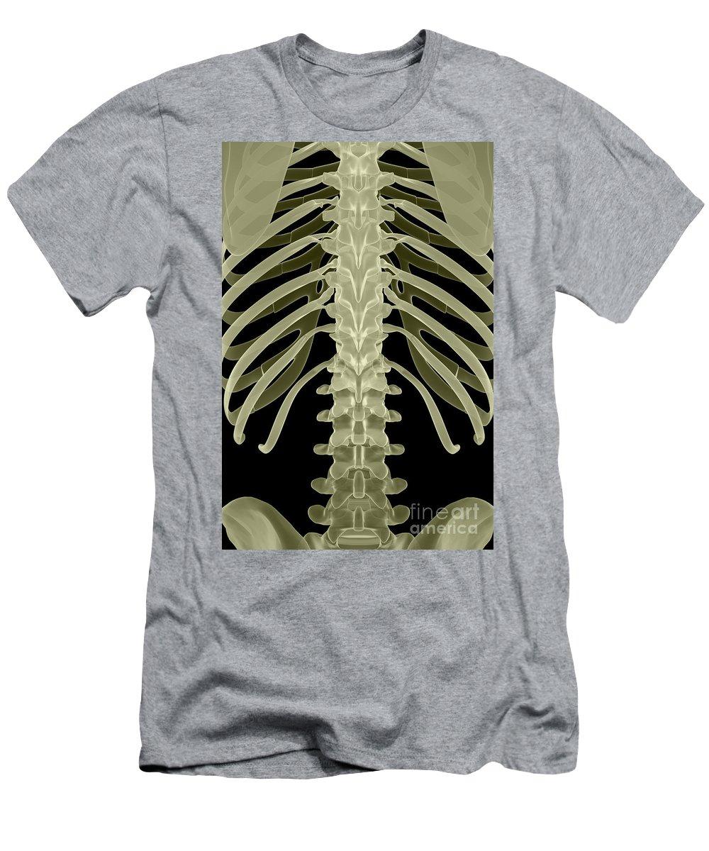 Thoracic Vertebrae T Shirts Fine Art America
