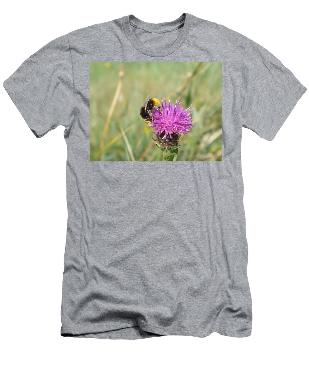 Thistle Men's T-Shirt (Athletic Fit) featuring the photograph Thistle by Adrienne Franklin
