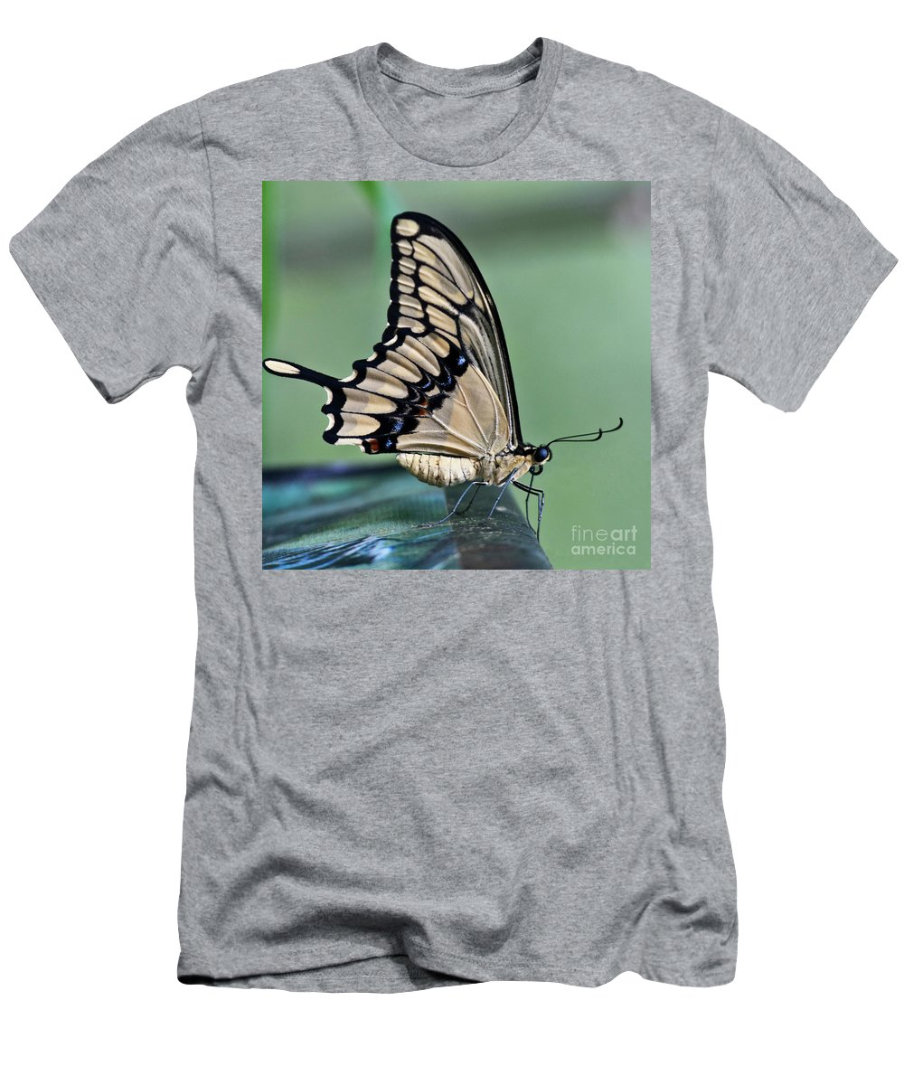 Heiko Men's T-Shirt (Athletic Fit) featuring the photograph Thoas Swallowtail Butterfly by Heiko Koehrer-Wagner
