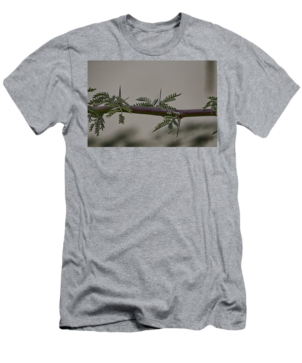 Thorns Men's T-Shirt (Athletic Fit) featuring the photograph Thorns Of The Acacia Tree by Douglas Barnard