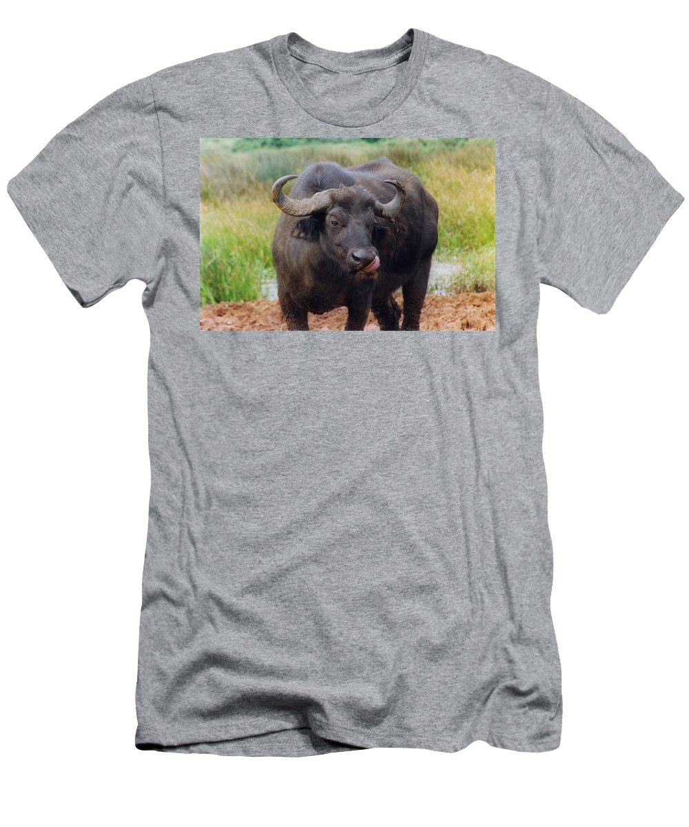Water Buffalo Men's T-Shirt (Athletic Fit) featuring the photograph Too Much Salt? by Belinda Greb