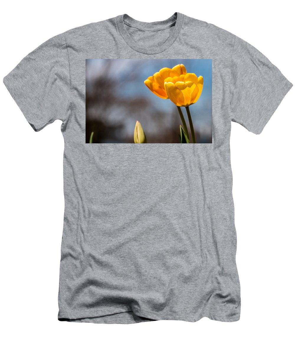 Bloom Men's T-Shirt (Athletic Fit) featuring the photograph Tulips by Gaurav Singh