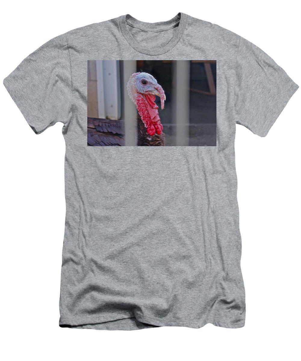 Turkey Men's T-Shirt (Athletic Fit) featuring the photograph Turkey 1 by Carol Tsiatsios