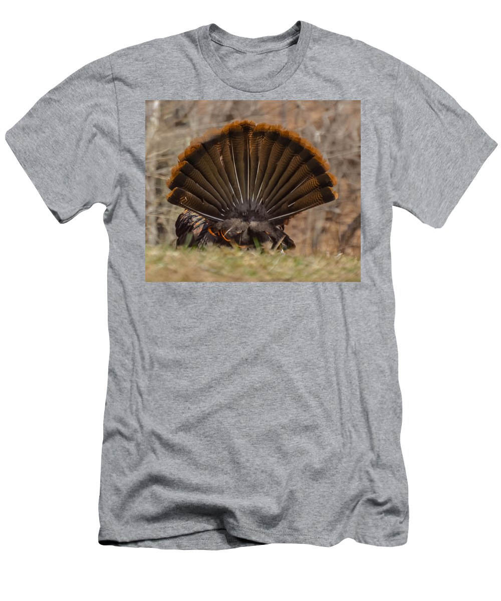 Turkey Men's T-Shirt (Athletic Fit) featuring the photograph Turkey Tail by Amy Porter