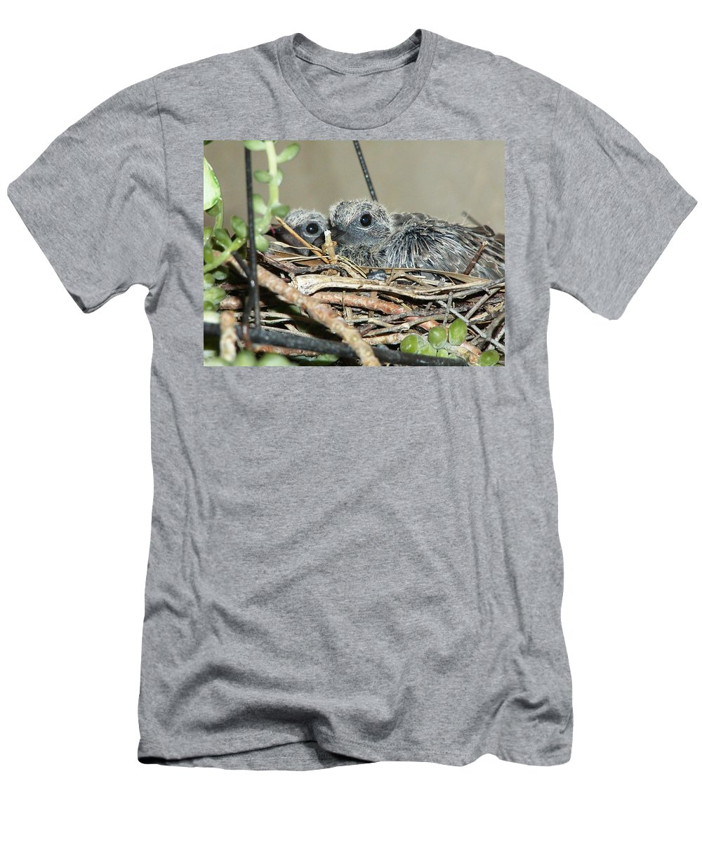 Bird Men's T-Shirt (Athletic Fit) featuring the photograph Two Baby Mourning Doves by Jussta Jussta