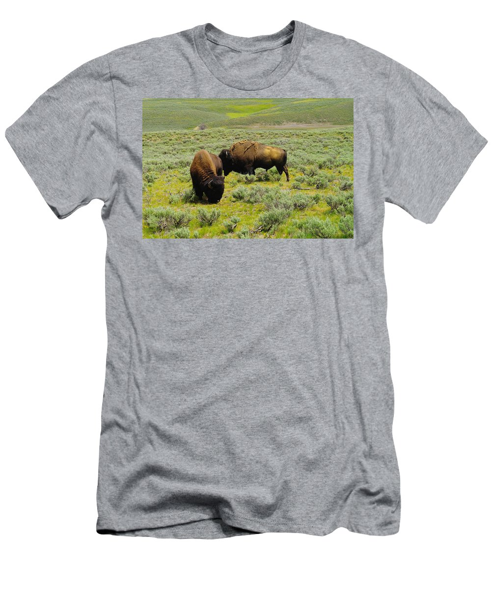 Buffalo. Bison Men's T-Shirt (Athletic Fit) featuring the photograph Two Bison by Jeff Swan