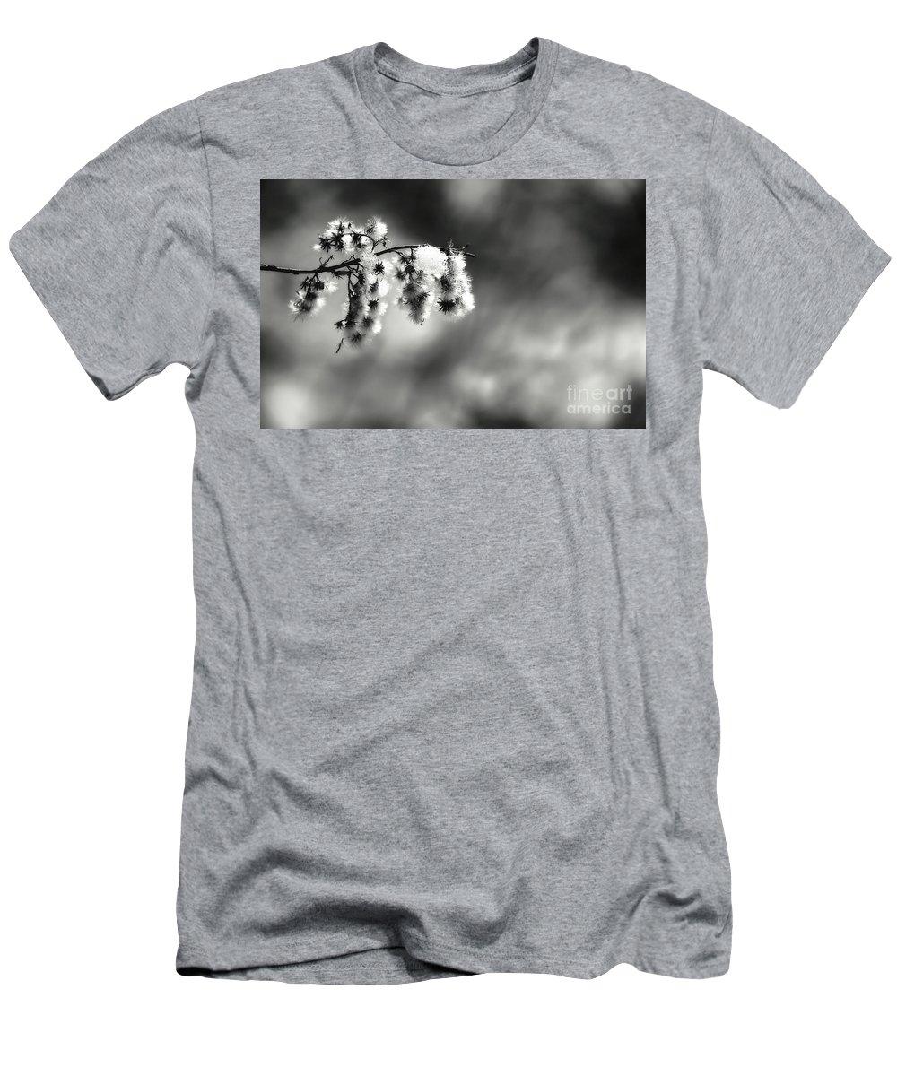 Bw Men's T-Shirt (Athletic Fit) featuring the photograph Untitled by Traci Law