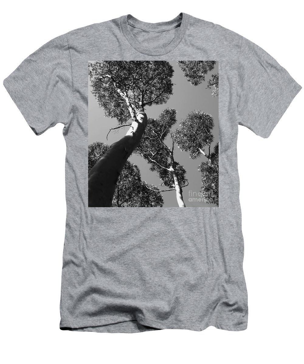 Black And White Photo Men's T-Shirt (Athletic Fit) featuring the digital art Valley Of The Giant Tingles Bw by Tim Richards