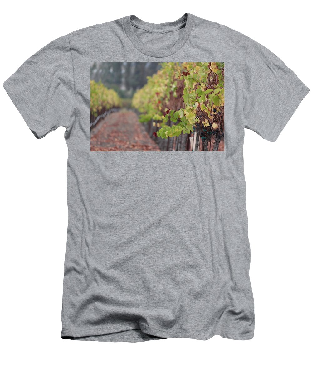 Petaluma Men's T-Shirt (Athletic Fit) featuring the photograph Vineyard View by Nicholas Miller