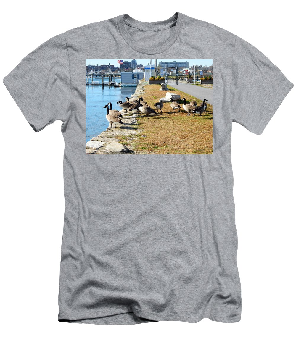 Canada Geese Men's T-Shirt (Athletic Fit) featuring the photograph Waiting For The Ferry by Kathy Barney