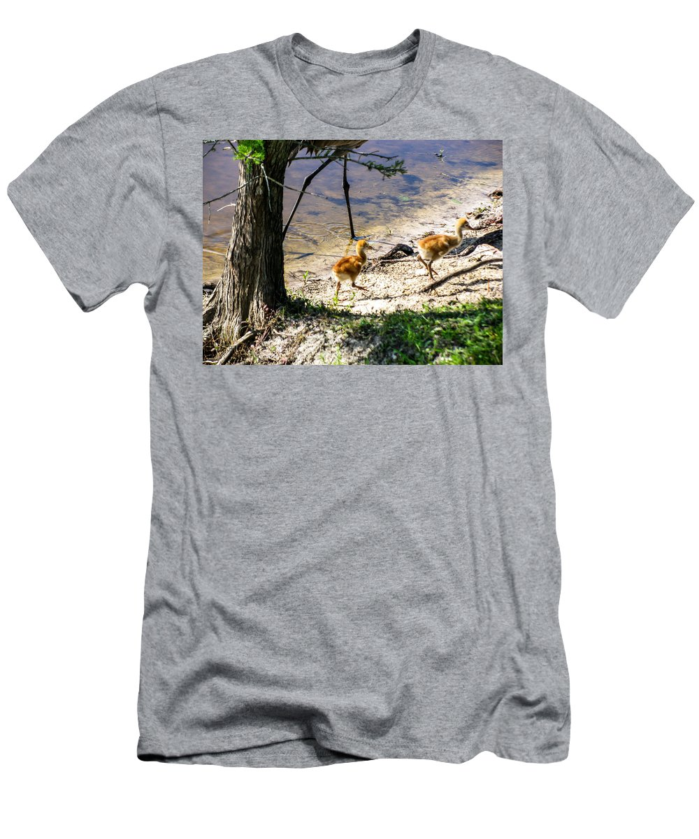 Sandhill Crane Chicks Men's T-Shirt (Athletic Fit) featuring the photograph Walking Around The Lake by Zina Stromberg
