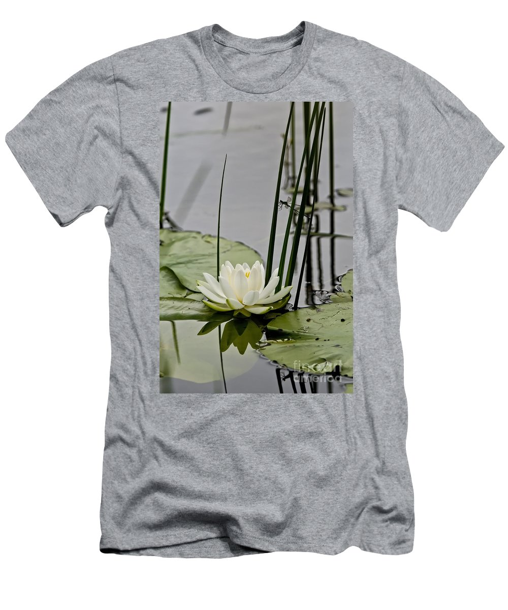 Water Lily Men's T-Shirt (Athletic Fit) featuring the photograph Water Lily Pictures 48 by World Wildlife Photography