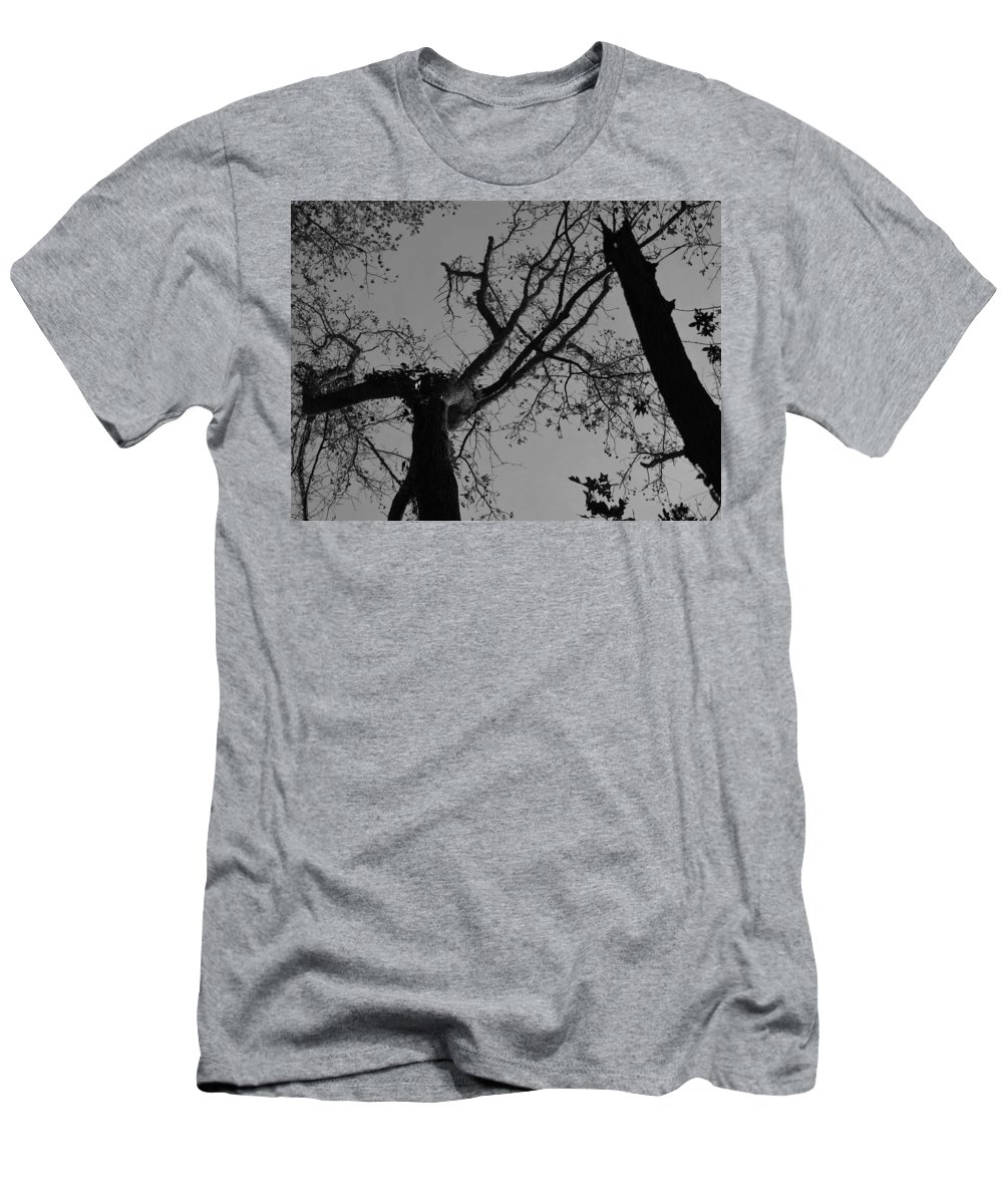 Wall Art Photographs Men's T-Shirt (Athletic Fit) featuring the photograph Silhouette Trees by Barb Dalton