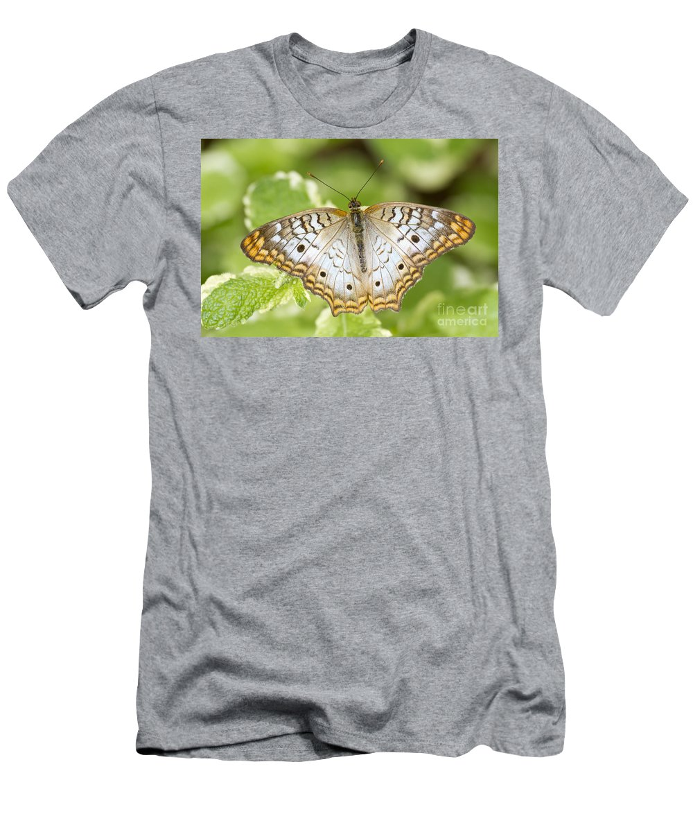 White Peacock Men's T-Shirt (Athletic Fit) featuring the photograph White Peacock by Bryan Keil