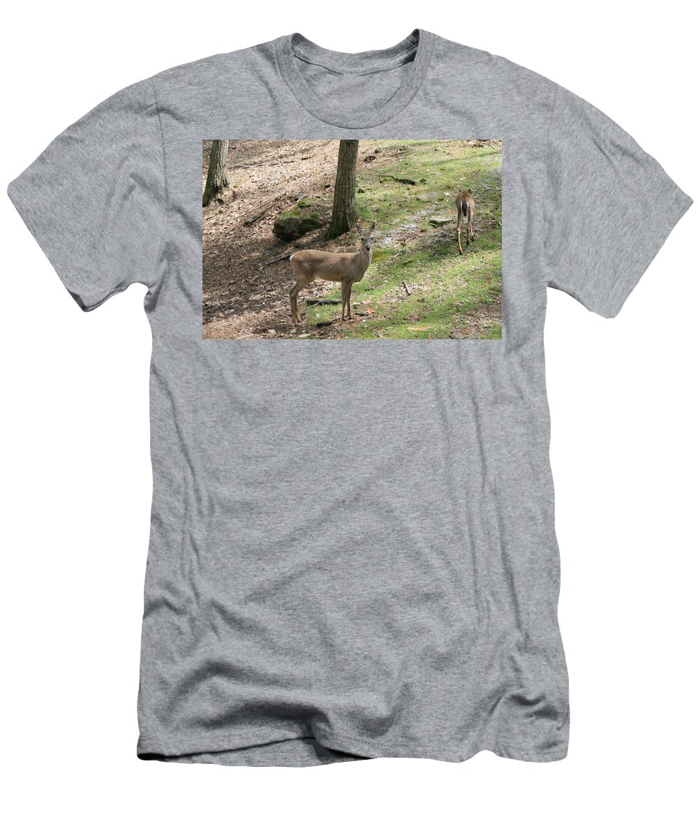 Deer Men's T-Shirt (Athletic Fit) featuring the photograph White Tail Deer by Mary Koval