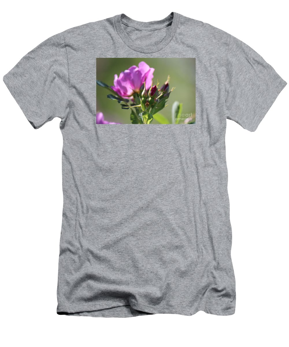 Wild Rose Men's T-Shirt (Athletic Fit) featuring the photograph Wild Rose by Ann E Robson