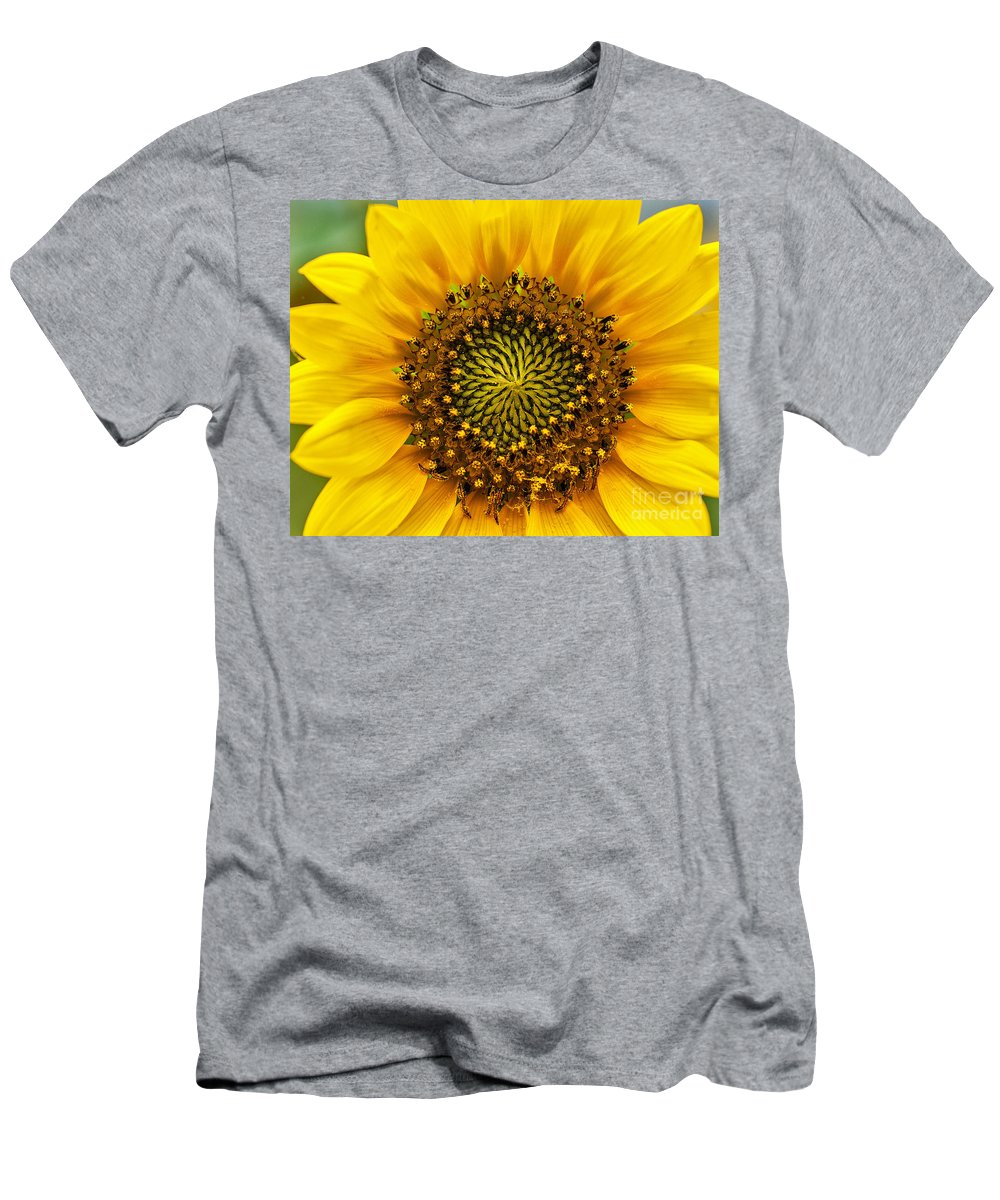 Wild Sunflower Photograph Men's T-Shirt (Athletic Fit) featuring the photograph Wild Sunflower by Mae Wertz