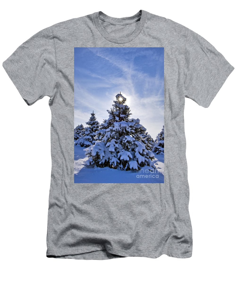 Spruce Men's T-Shirt (Athletic Fit) featuring the photograph Winter Starburst - D008347 by Daniel Dempster