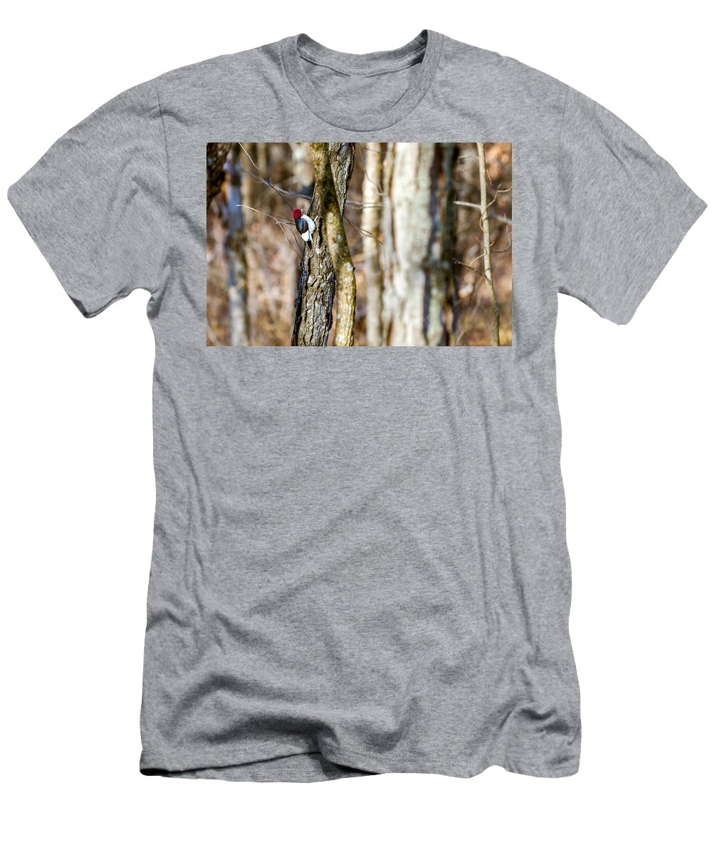 Woodpecker Men's T-Shirt (Athletic Fit) featuring the photograph Woody by Sennie Pierson