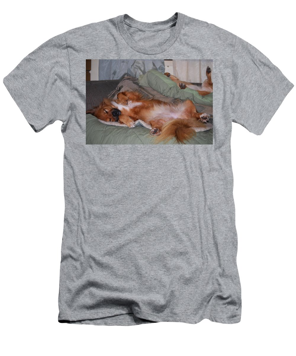 Lady And Foxy Nap Time. Dog Men's T-Shirt (Athletic Fit) featuring the photograph Worn Out by Robert Floyd