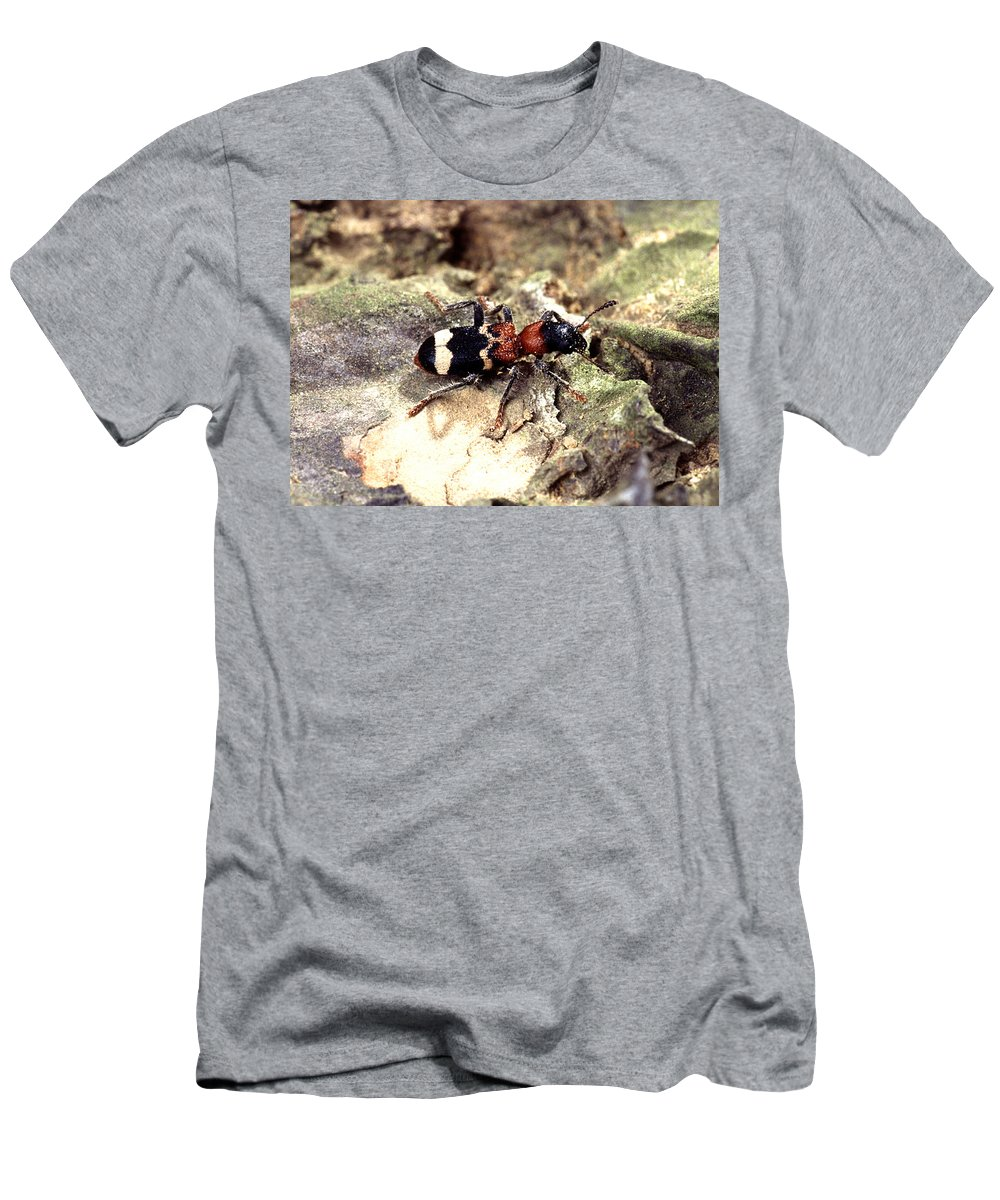 Science Men's T-Shirt (Athletic Fit) featuring the photograph Cirrus Cloud by Photo Researchers, Inc.