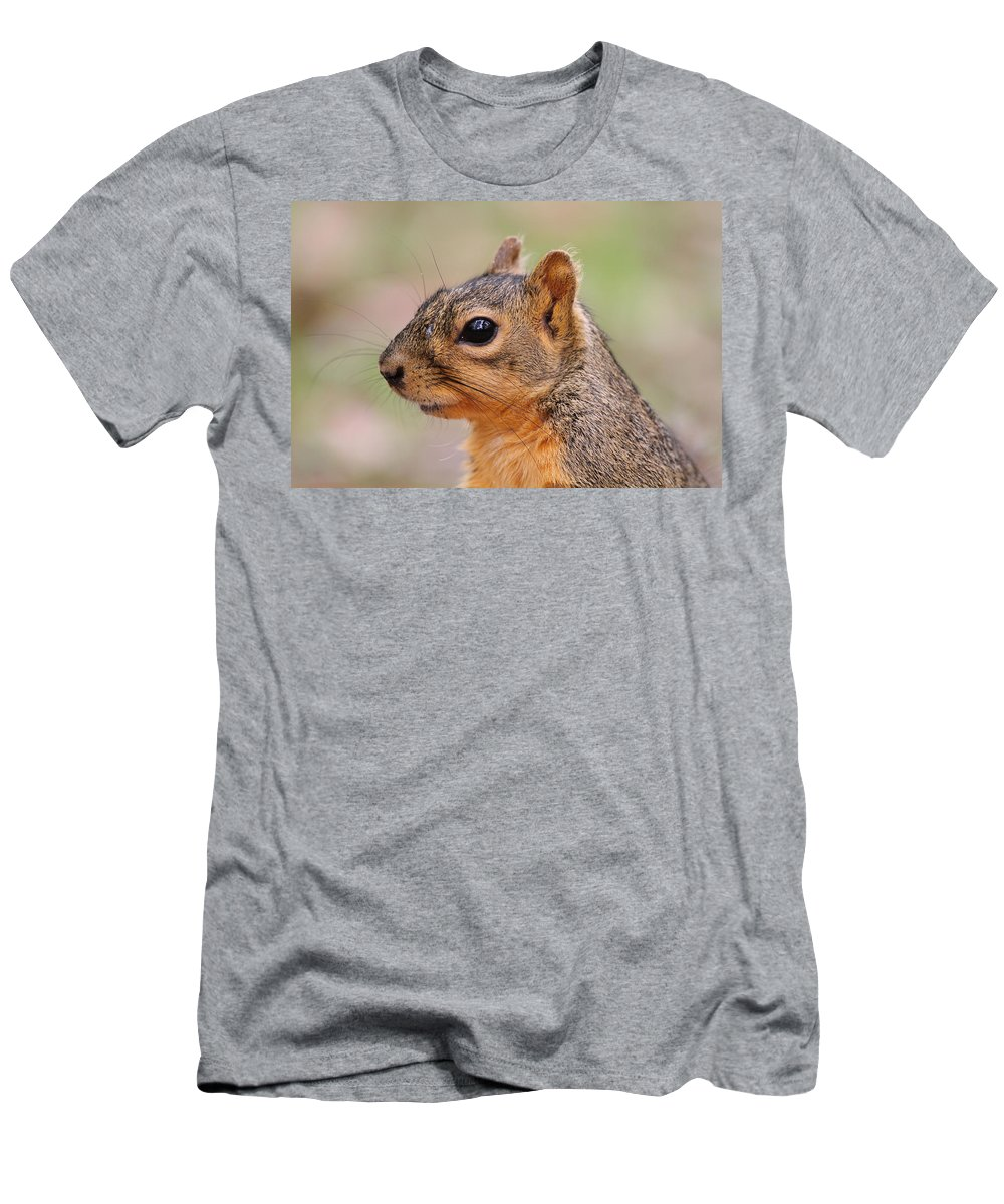 Doug Lloyd Men's T-Shirt (Athletic Fit) featuring the photograph Pine Squirrel by Doug Lloyd