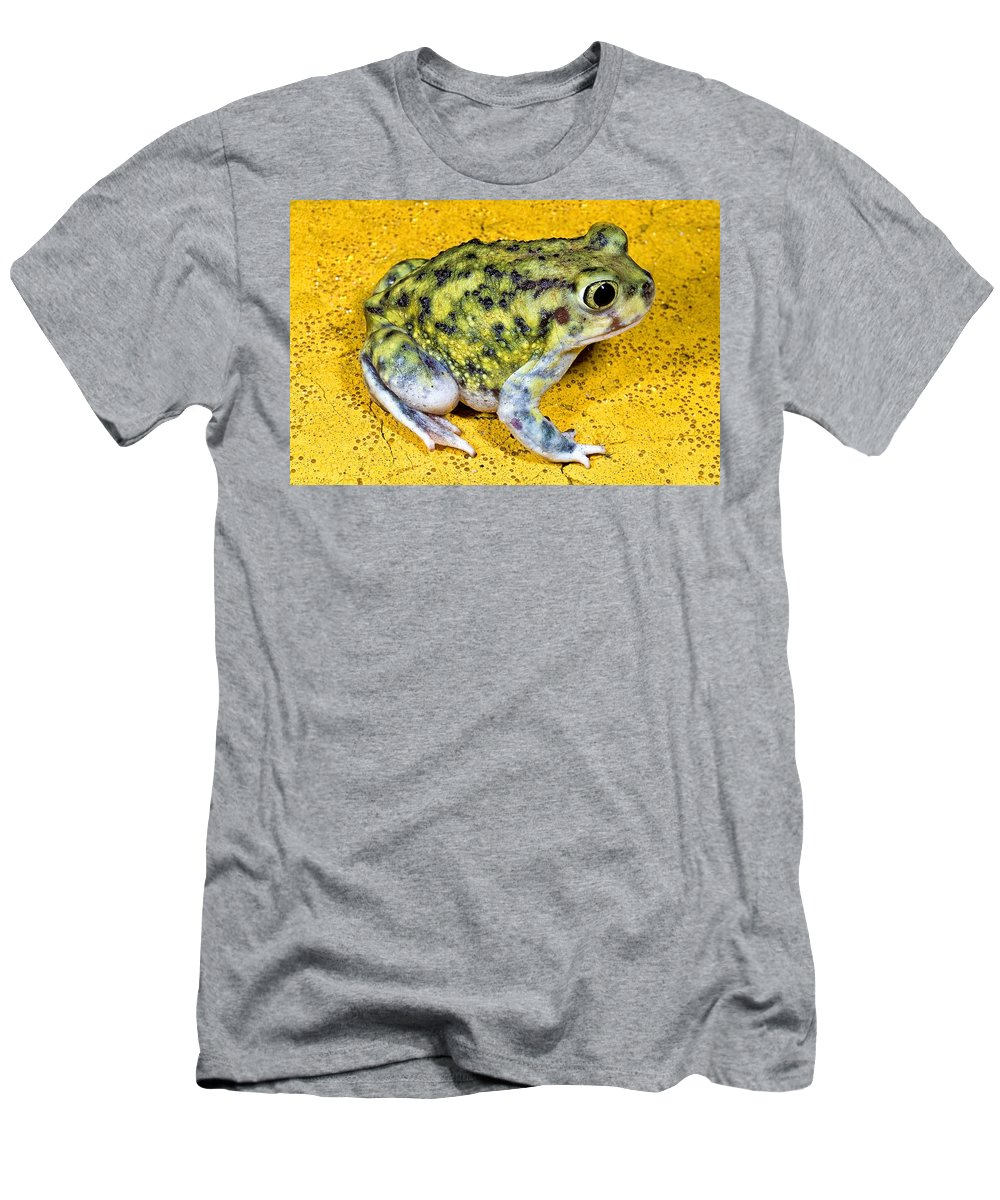 Animal Men's T-Shirt (Athletic Fit) featuring the photograph A Spadefoot Toad by Jack Goldfarb