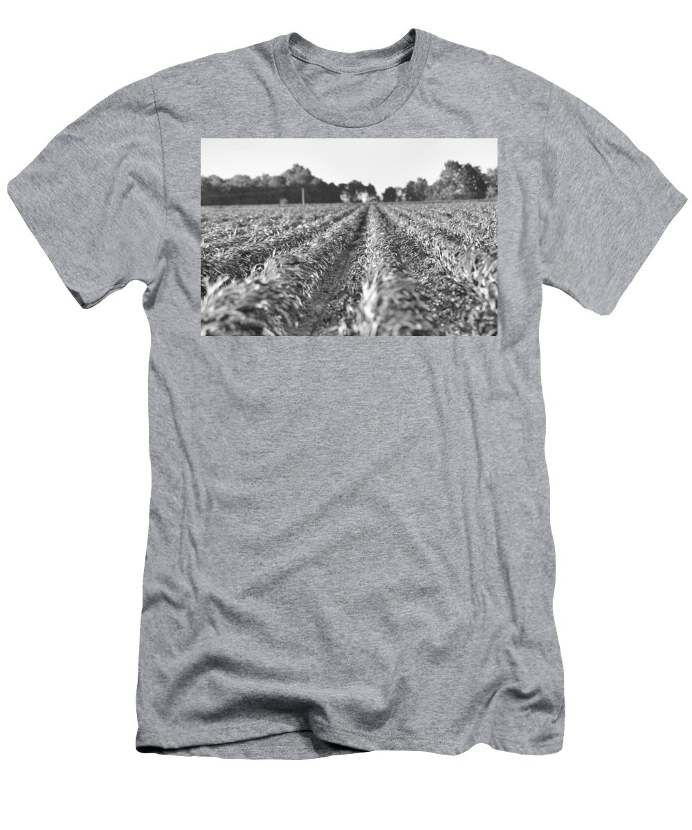 Land Men's T-Shirt (Athletic Fit) featuring the photograph Agriculture- Corn 2 by Karen Wagner