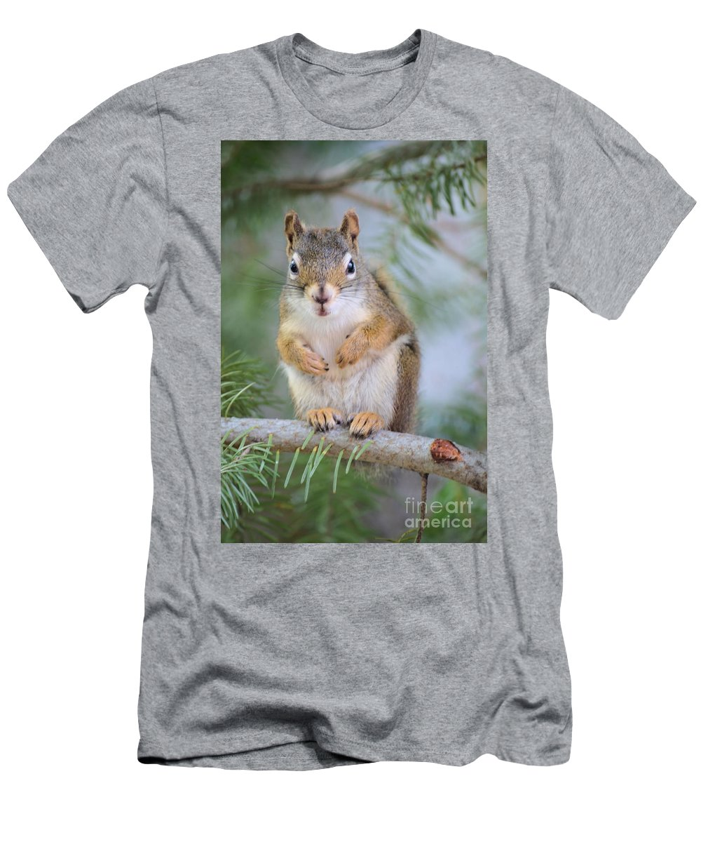Chipmunk Men's T-Shirt (Athletic Fit) featuring the photograph Are You Looking At Me by Tara Turner