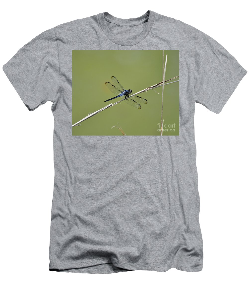 Dragonfly Men's T-Shirt (Athletic Fit) featuring the photograph Bar-winged Skimmer by Al Powell Photography USA