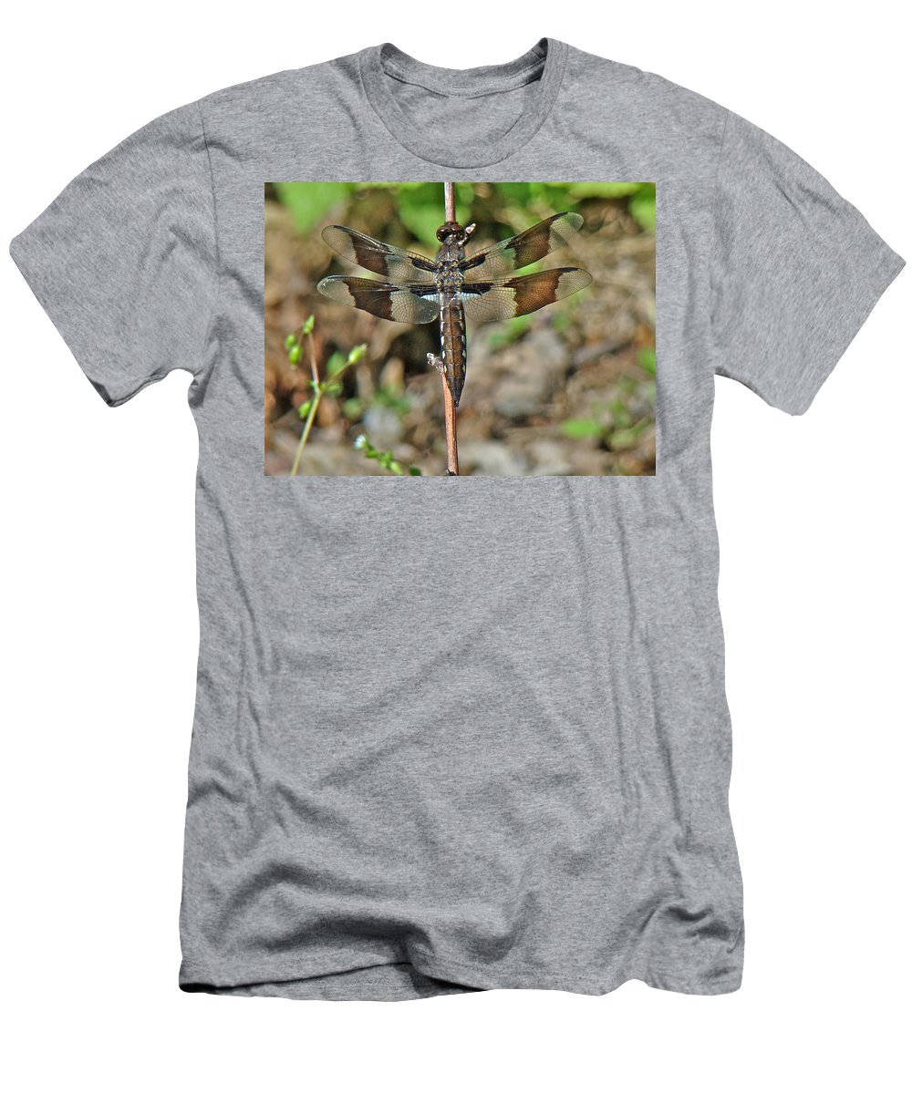 Dragonfly Men's T-Shirt (Athletic Fit) featuring the photograph Common Whitetail Dragonfly - Plathemis Lydia - Female by Mother Nature