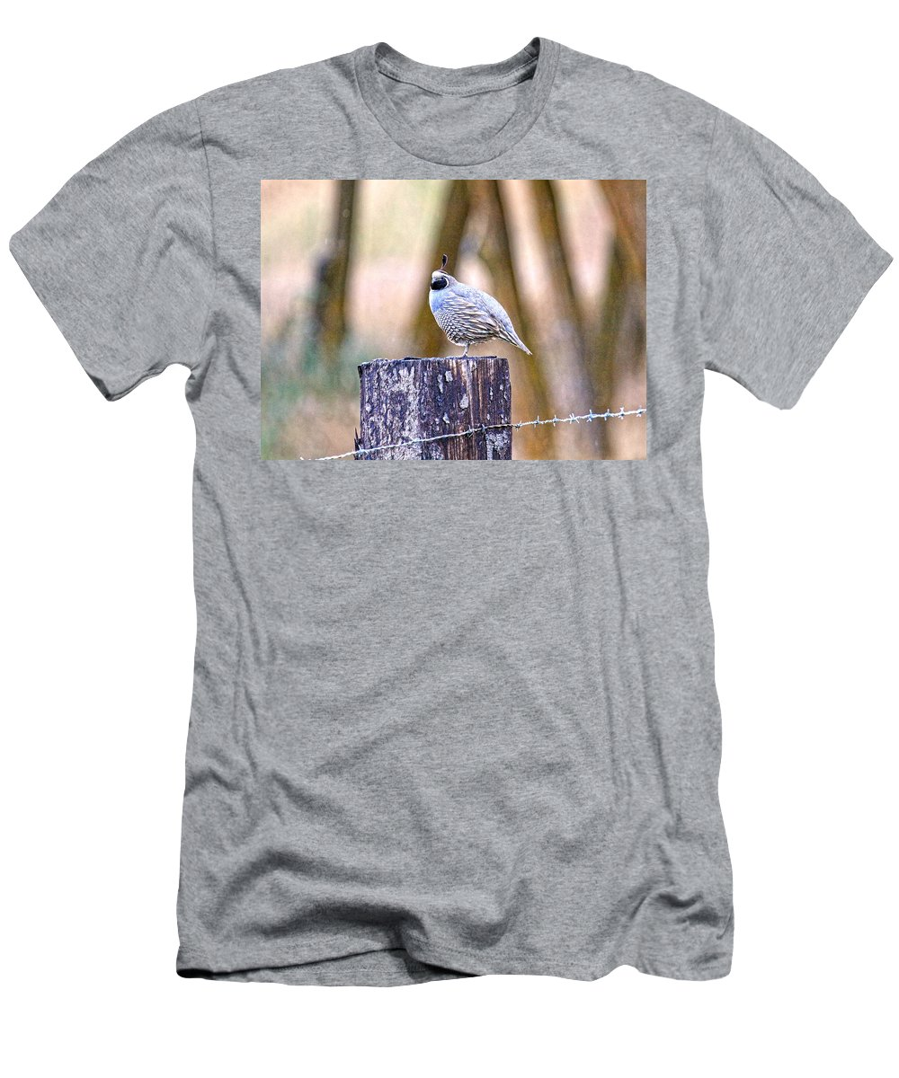 Quail Men's T-Shirt (Athletic Fit) featuring the photograph Country Quail by Steve McKinzie