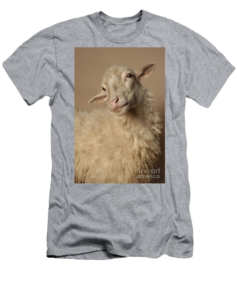 Sheep Men's T-Shirt (Athletic Fit) featuring the photograph Domestic Sheep by Raul Gonzalez Perez