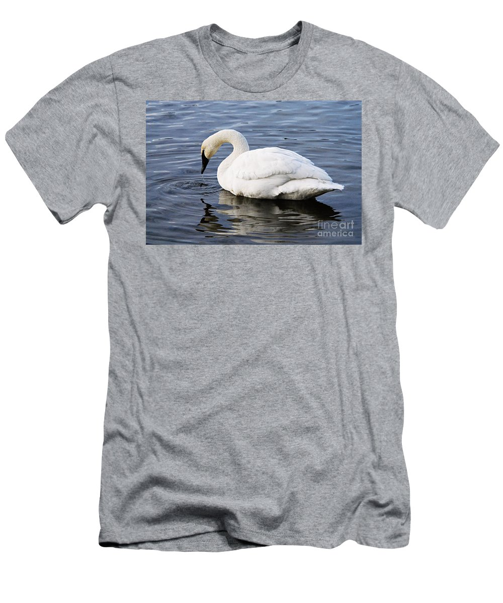 Photography Men's T-Shirt (Athletic Fit) featuring the photograph Dribbling Swan by Larry Ricker