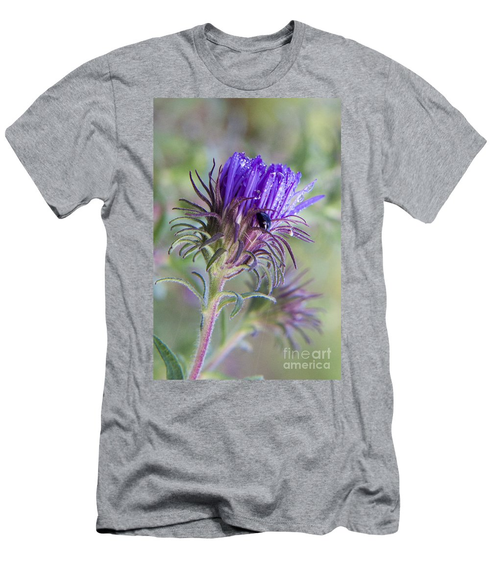 Knapweed Men's T-Shirt (Athletic Fit) featuring the photograph Early Knapweed by Darleen Stry
