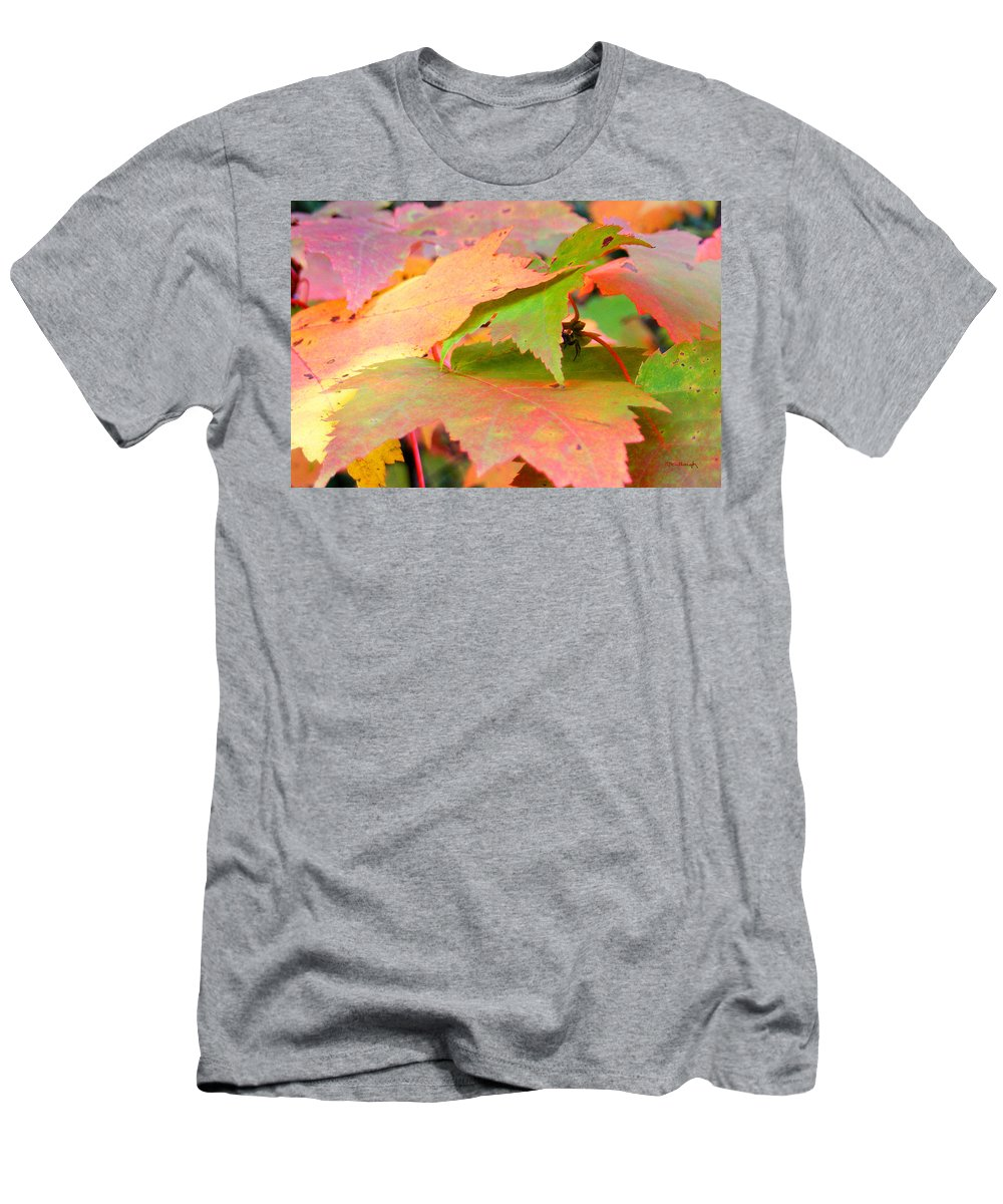 Maple Leaves Men's T-Shirt (Athletic Fit) featuring the photograph Fall Maple Leaves by Duane McCullough