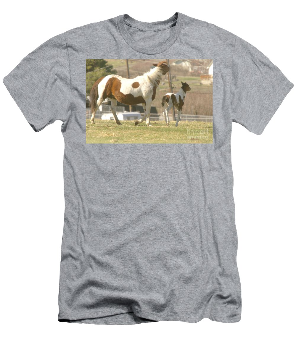 Horses Men's T-Shirt (Athletic Fit) featuring the photograph Feeling Frolicsome by Jeff Swan