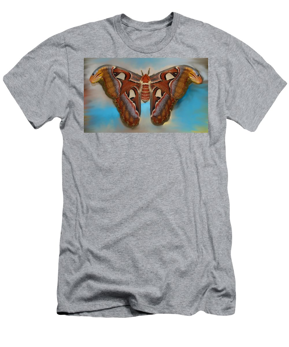 Antenna Men's T-Shirt (Athletic Fit) featuring the photograph Giant Silk Moth by William Bartholomew
