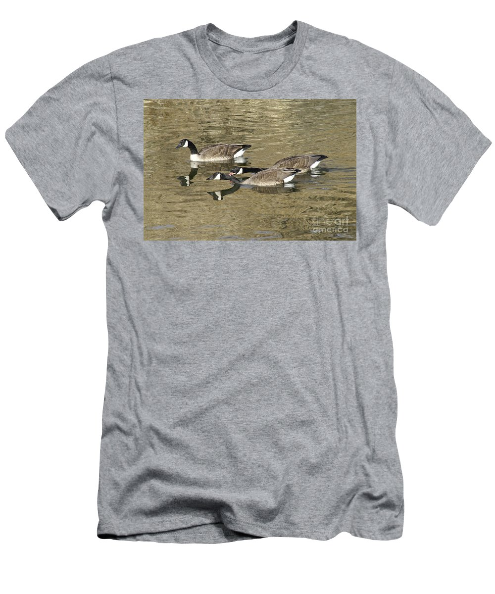 Goose Men's T-Shirt (Athletic Fit) featuring the photograph Goose Giving A Warning by Lori Tordsen