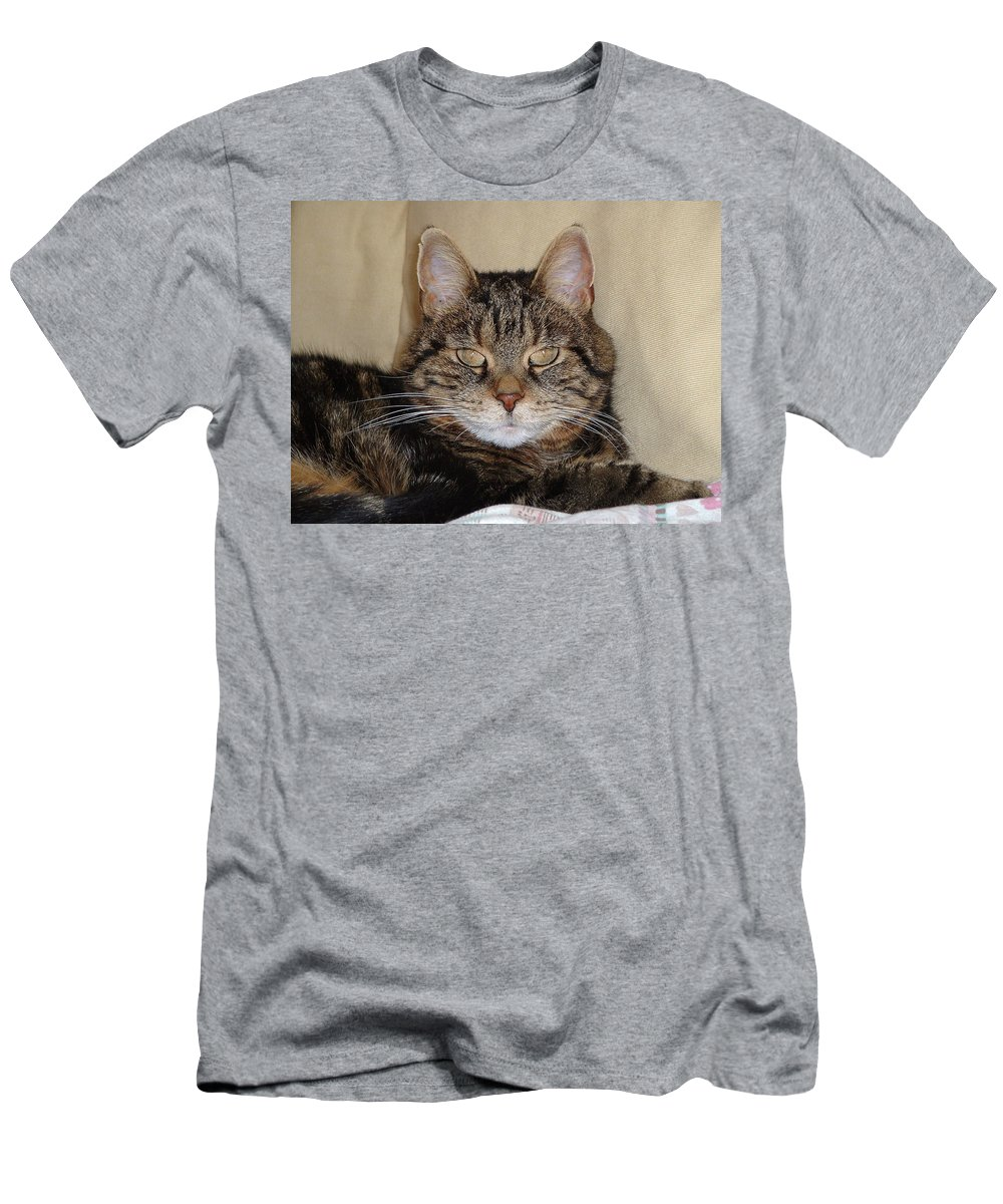 Cat Men's T-Shirt (Athletic Fit) featuring the photograph Gypsy 0007 by Guy Whiteley