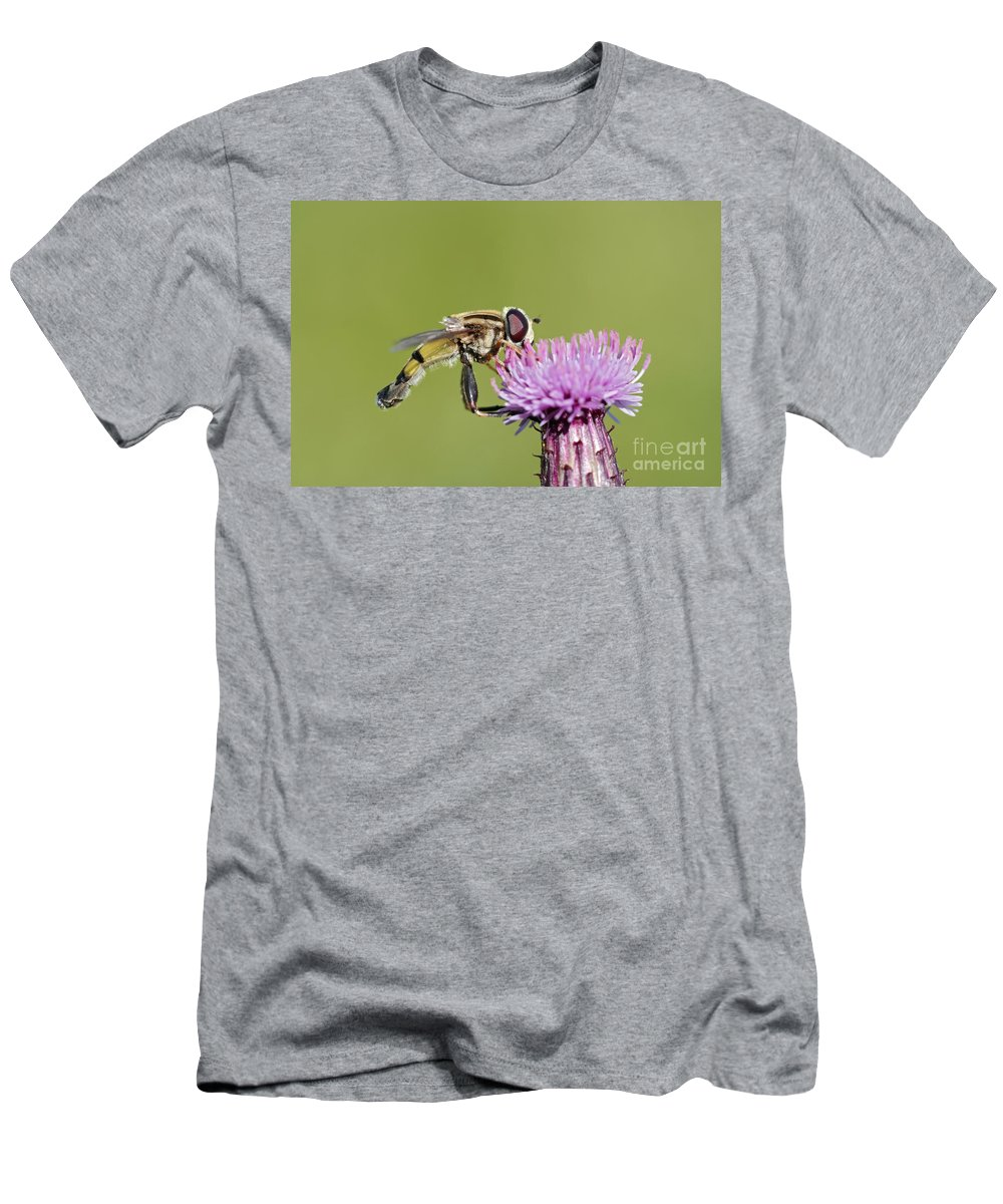 Insect Men's T-Shirt (Athletic Fit) featuring the photograph In The Bloom by Michal Boubin