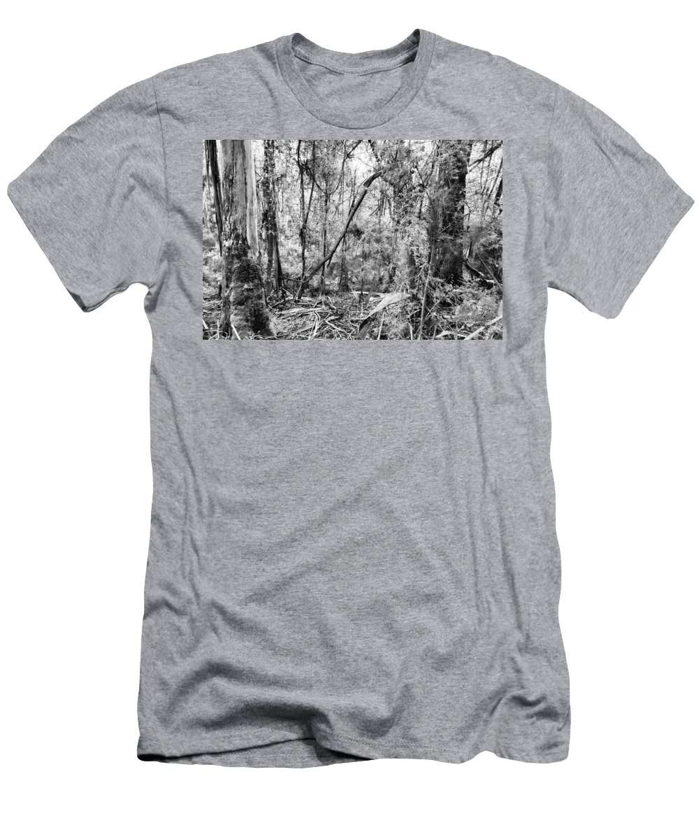 Gumtree Forest Men's T-Shirt (Athletic Fit) featuring the photograph In The Woods by Douglas Barnard