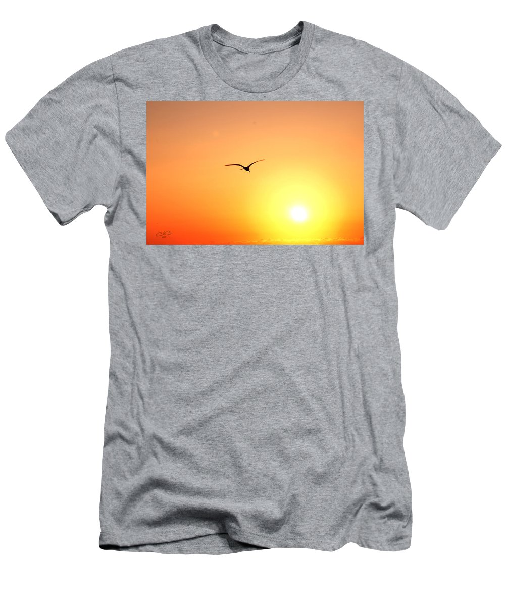 Sun T-Shirt featuring the photograph Into the Sun by Christine Stonebridge